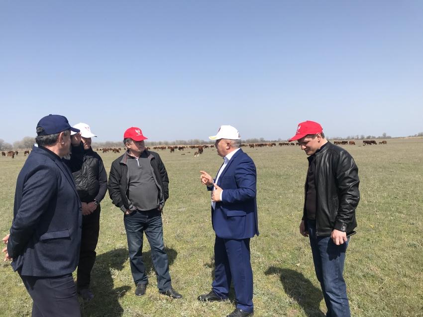 Представители Минсельхоза Дагестана ознакомились с передовым хозяйством республики